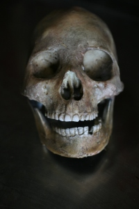 ancient-peruvian-skull-250