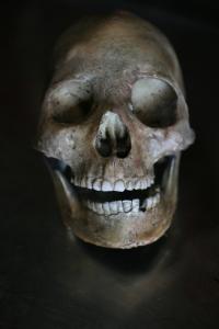 ancient-peruvian-skull-250