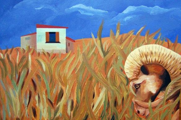 mouflon-in-long-grass